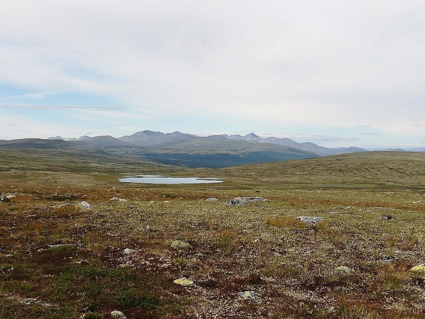 Her er et bilde av Steintjørna som ligger rett ved Vardehøgda ovenfor Bretningen i Sollia. Her kan man ha en perfekt dagstur for å komme seg til et idyllisk fiskevann.
