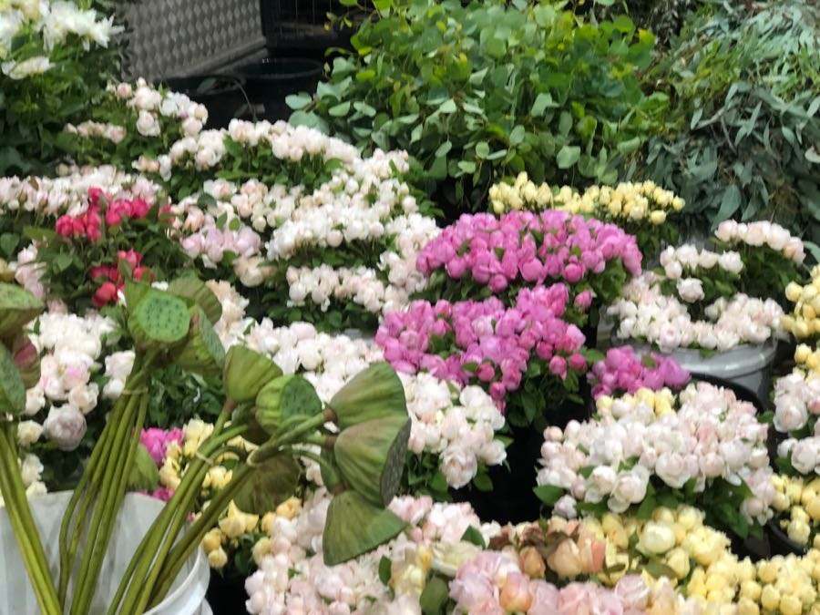 Sourcing fresh flowers for our new Darwin flower shop, flowers from interstate and overseas.