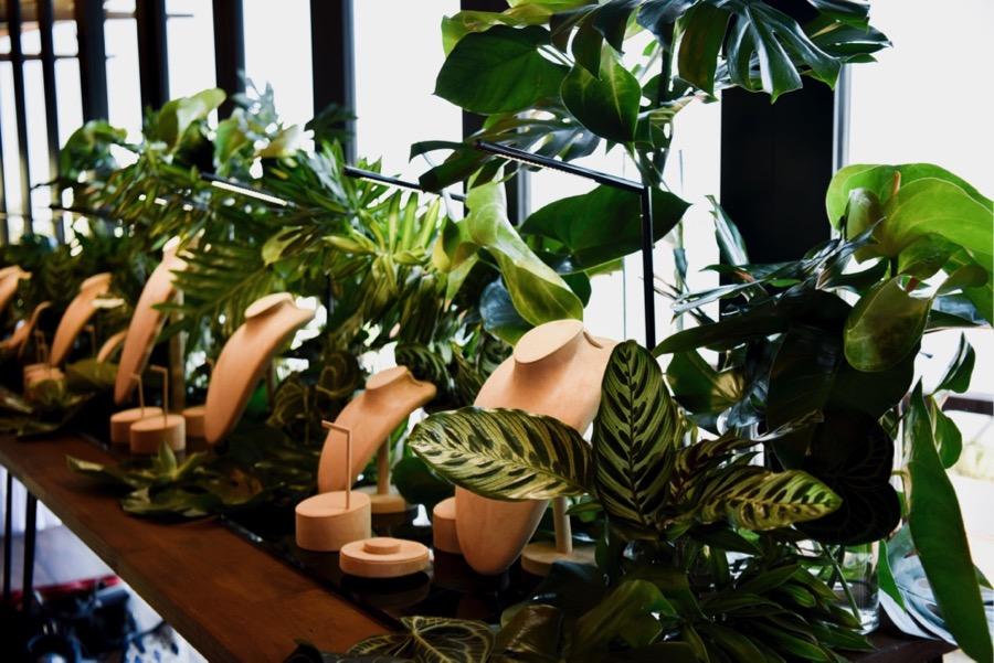 calathea, anthurium, monstera leaves create a backdrop for the Paspaley Monsoon season launch