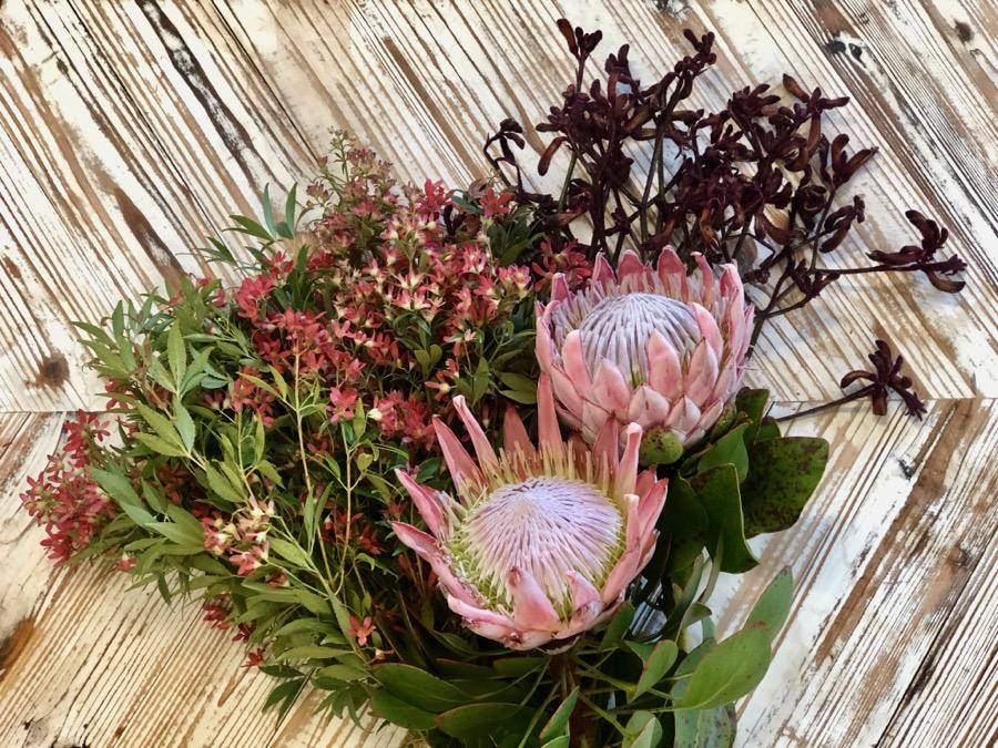 Christmas bush, king protea and kangaroo paw, native blooms, at Darwin florist, Beija Flor