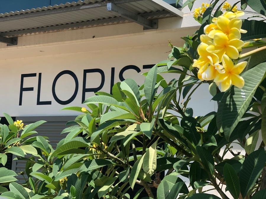 Beija Flor Darwin, florist and floral design studio in Coconut Grove, NT