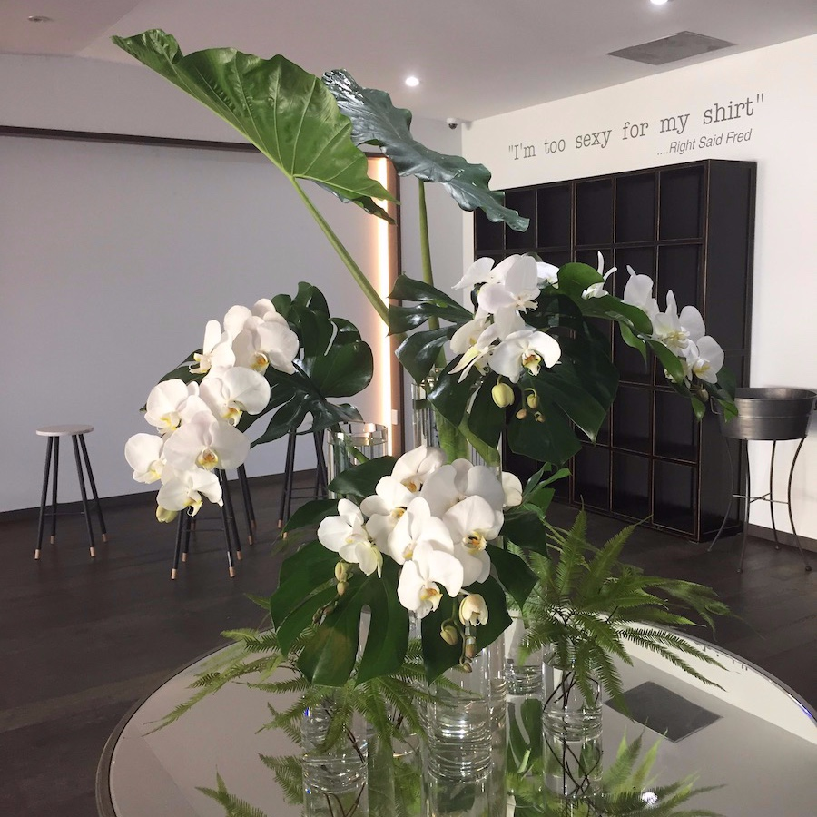Modern white and green flower display with glass cylinder vases at Darwins, mens fashion retailer, Attitude for Men.