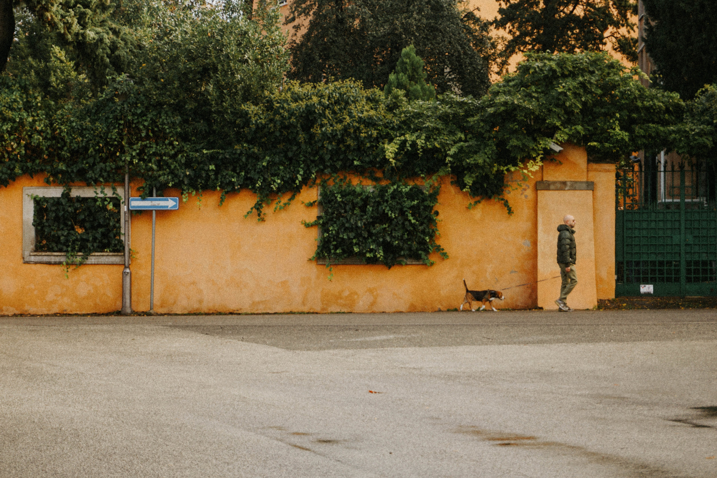 One of my favorite images from Rome. Dog-walker near Aventine Hill keyhole.