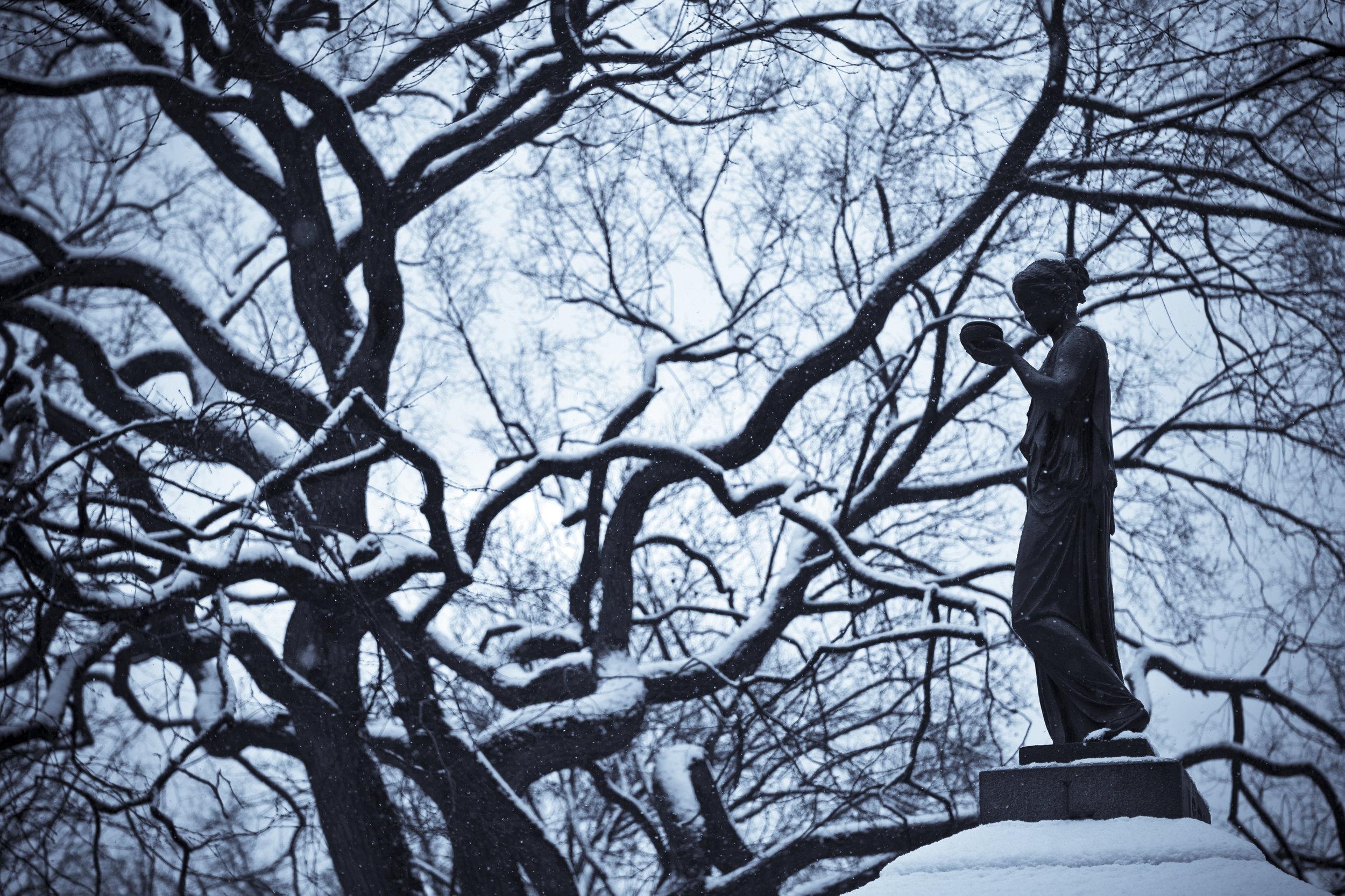 Lady in Winter.jpg