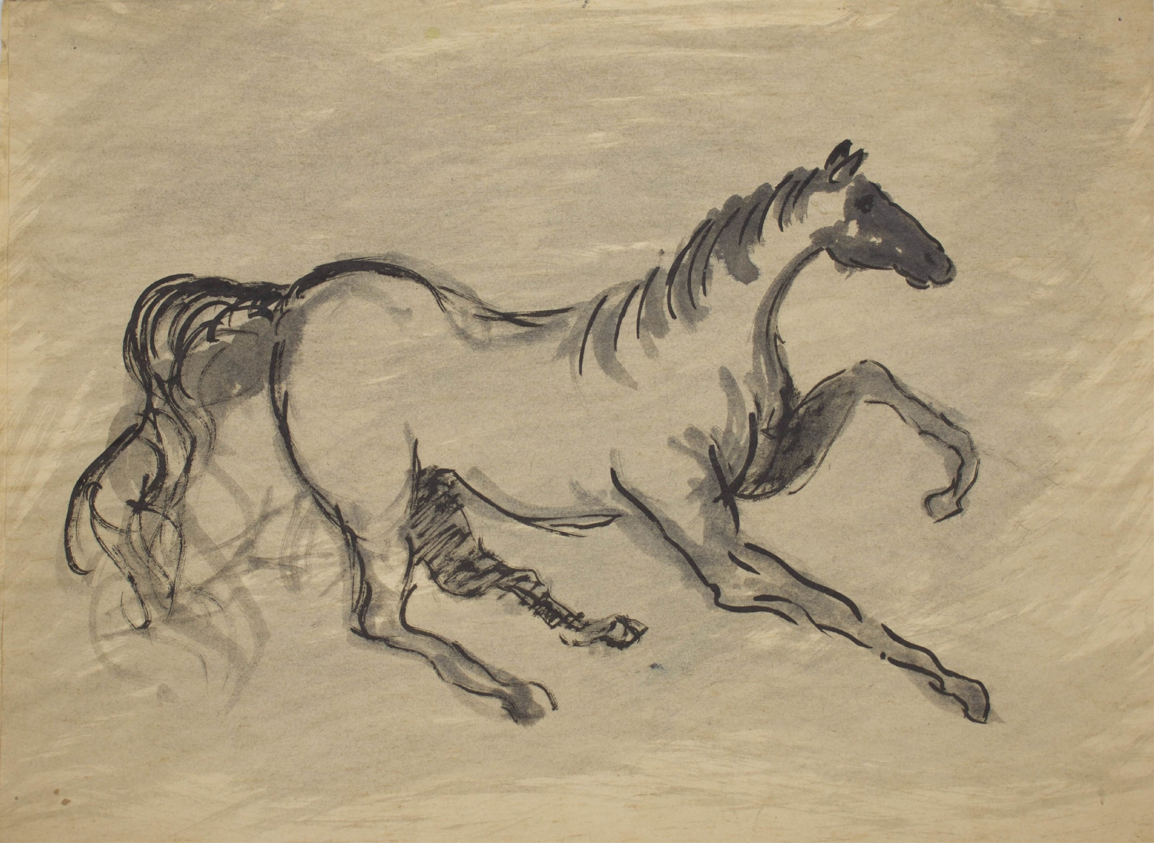 """""""Galloping Horse""""    18"""" x 13""""    Ink On Parchment"""