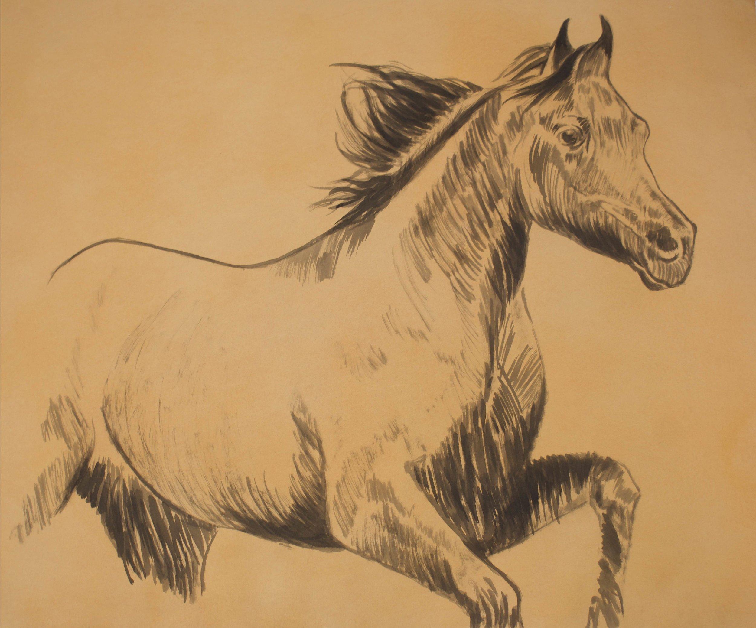"""""""Peach Horse""""    38"""" x 31""""    Gouache on Paper"""