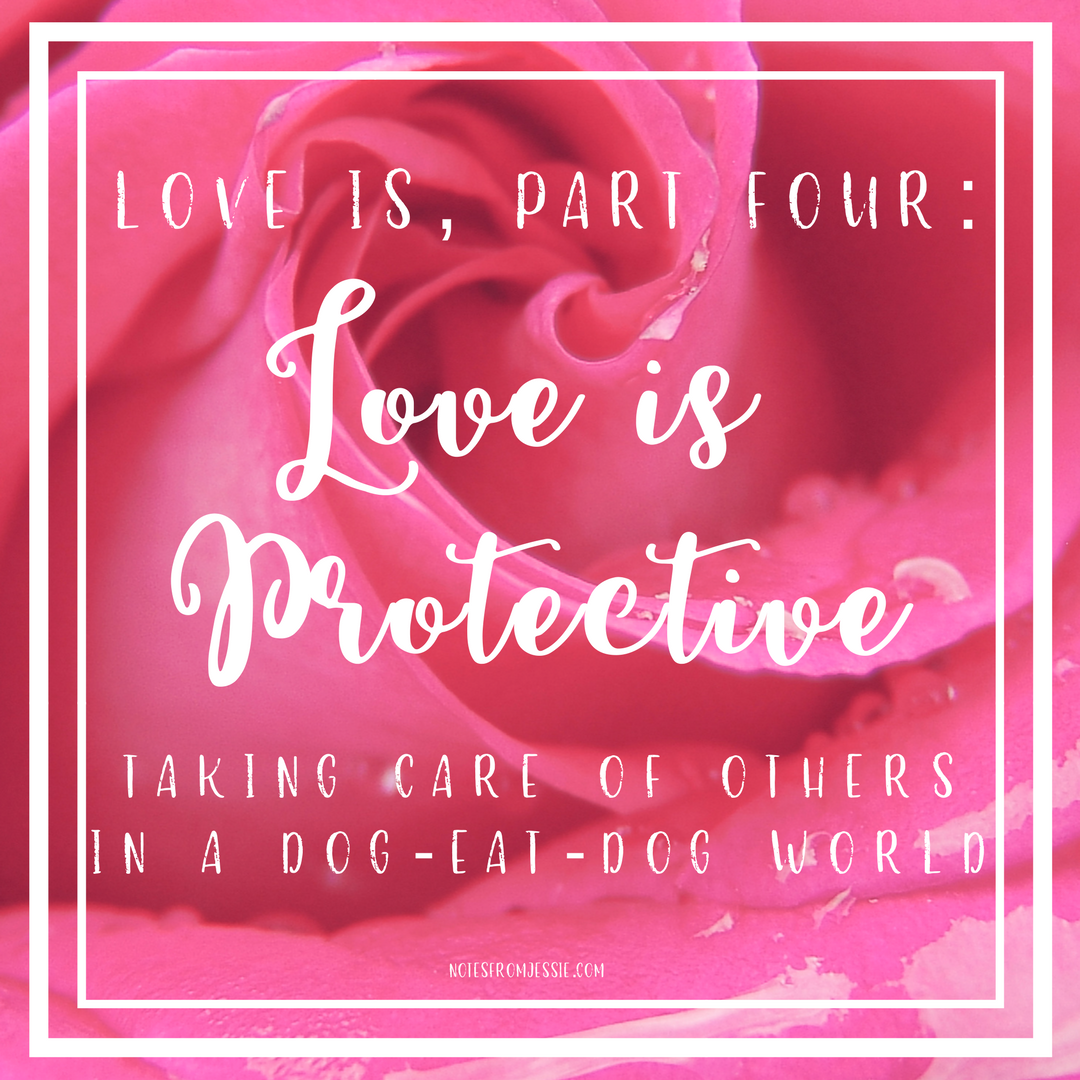 Love Is, Part 4_ Love is Protective.png