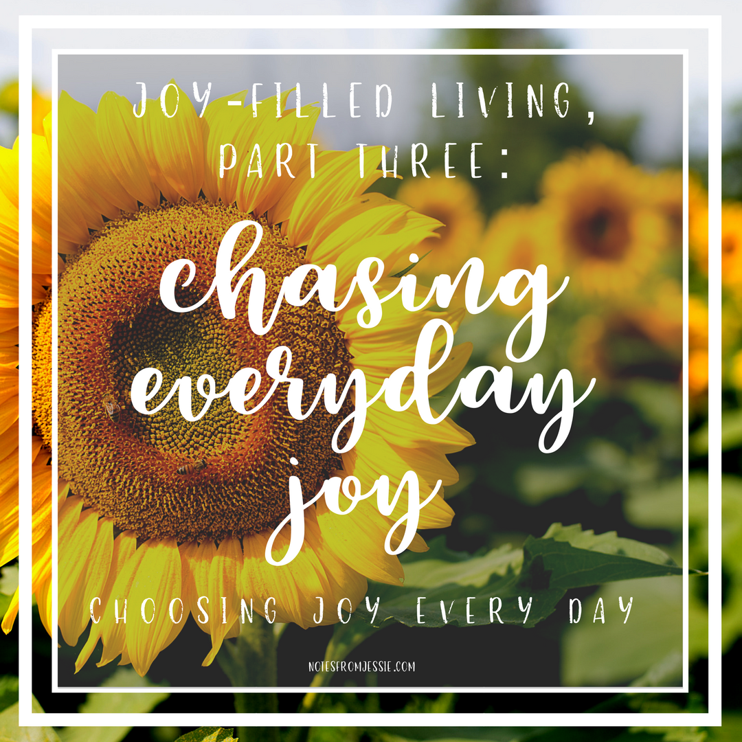 chasing everyday joy.png