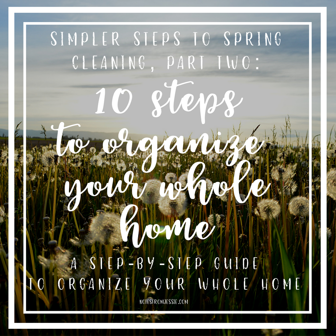 simpler spring cleaning 1 (2).png