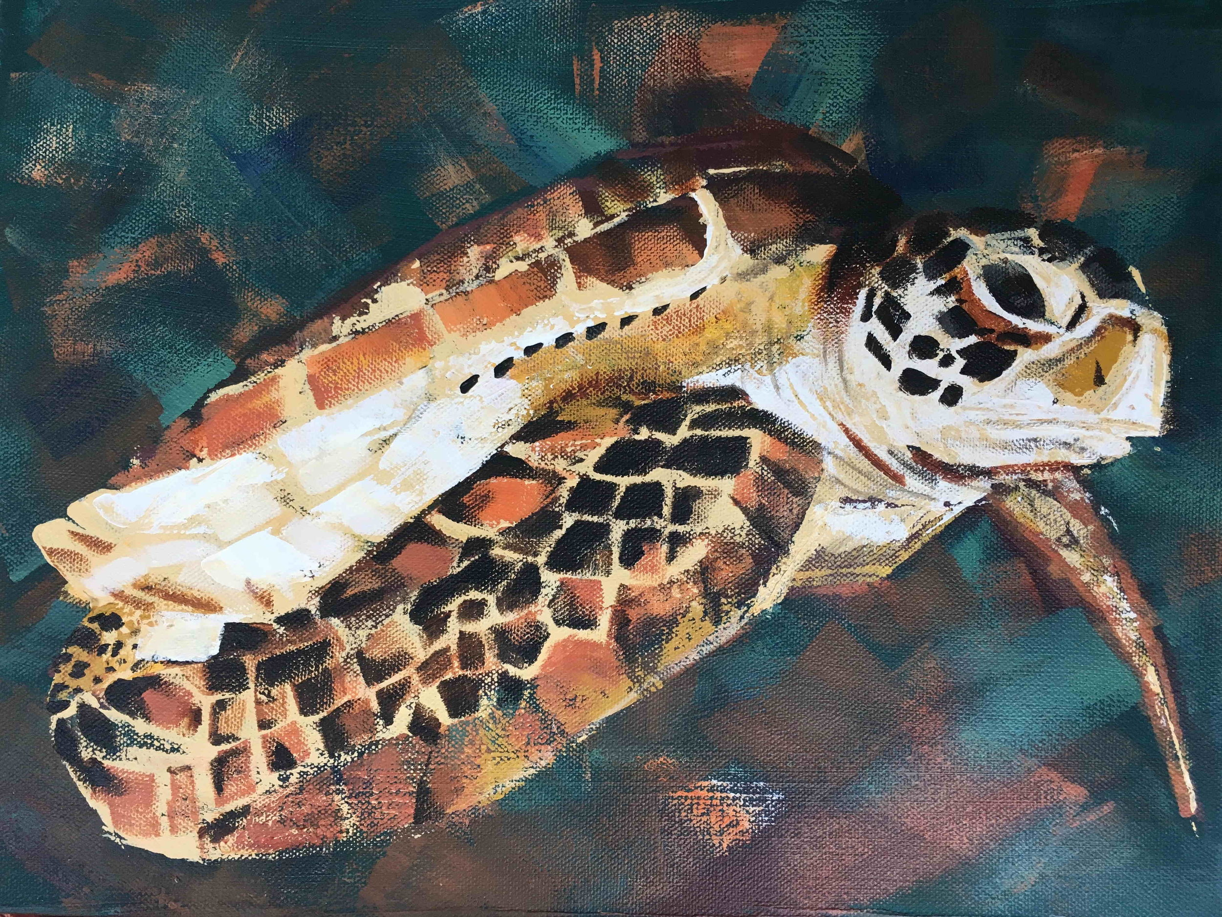 Annya's Turtle