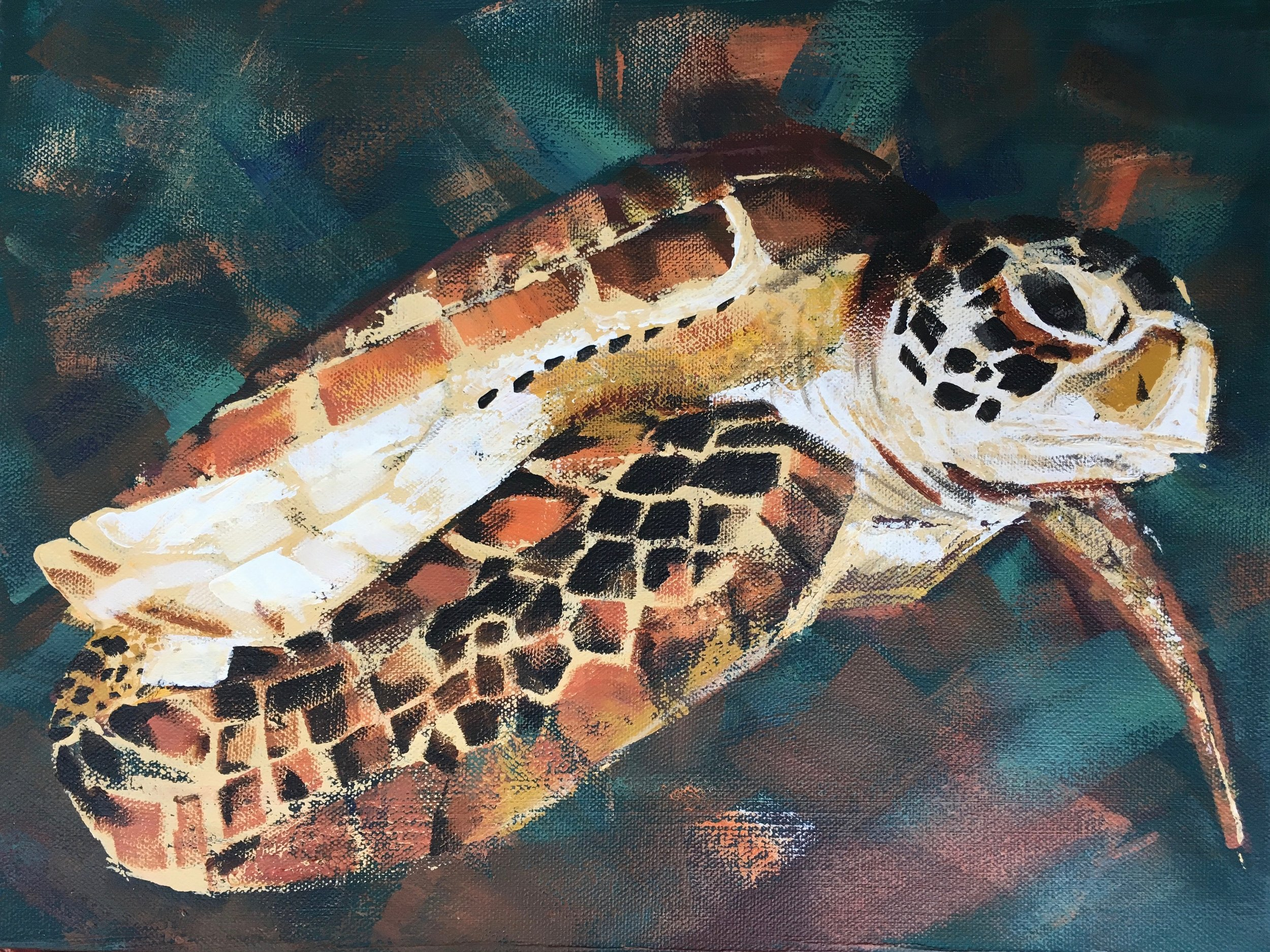 'Annya's Turtle', ©Susan Clare Available  here  as a print (part proceeds to the SSTK)