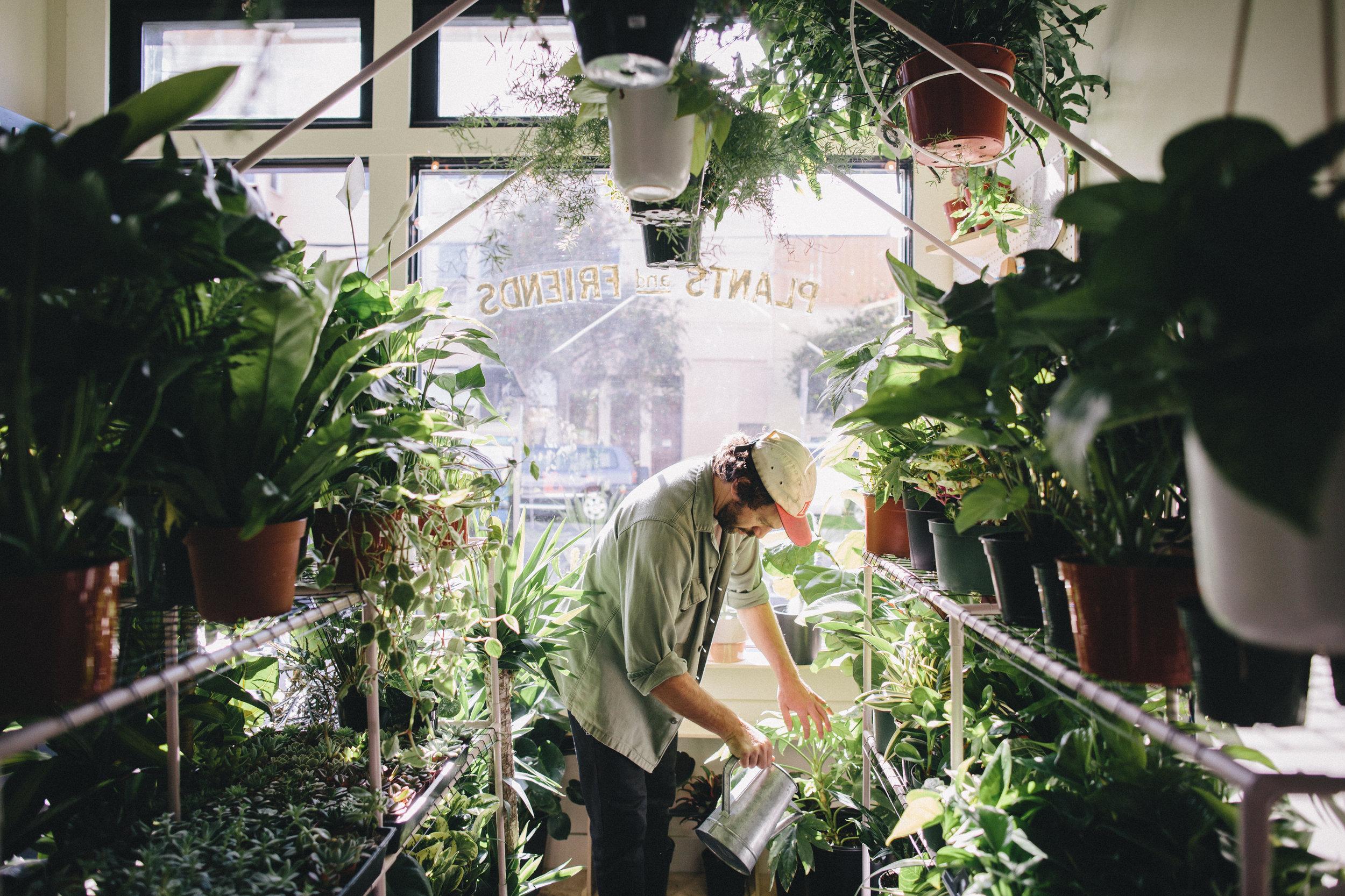 PlantsandFriends2018-89.jpg