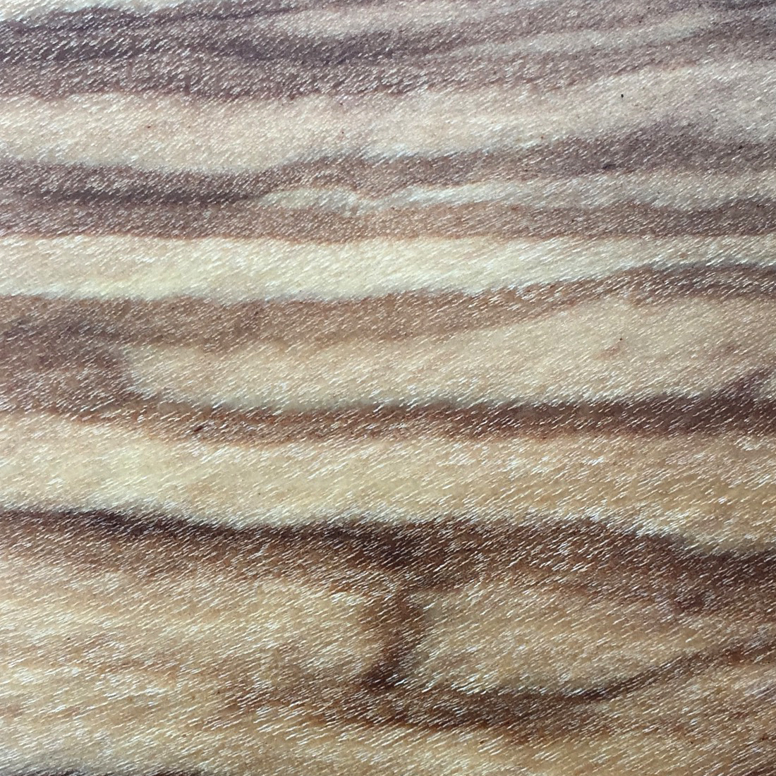 Olive Wood - read