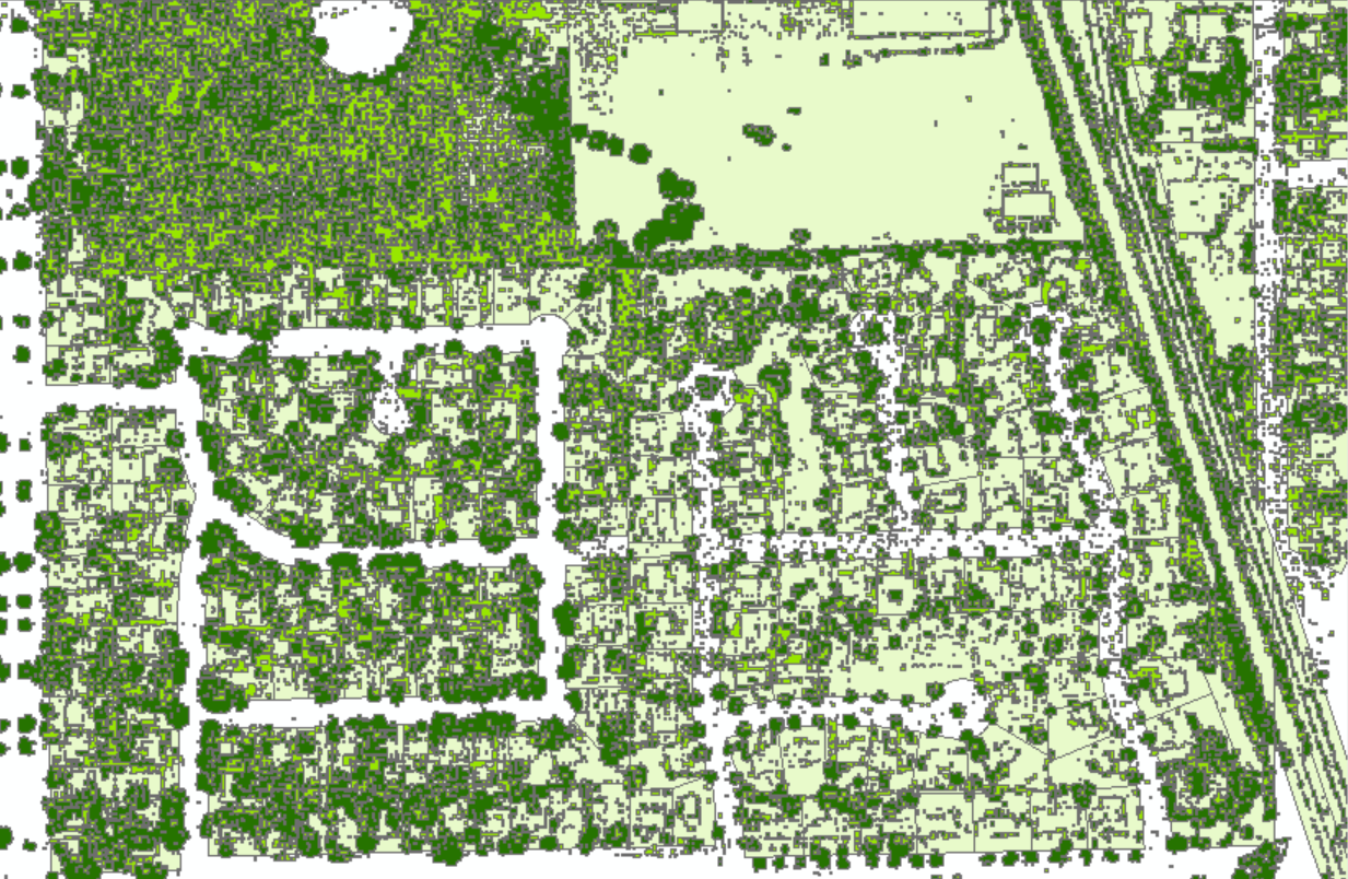 Tree Canopy Coverage