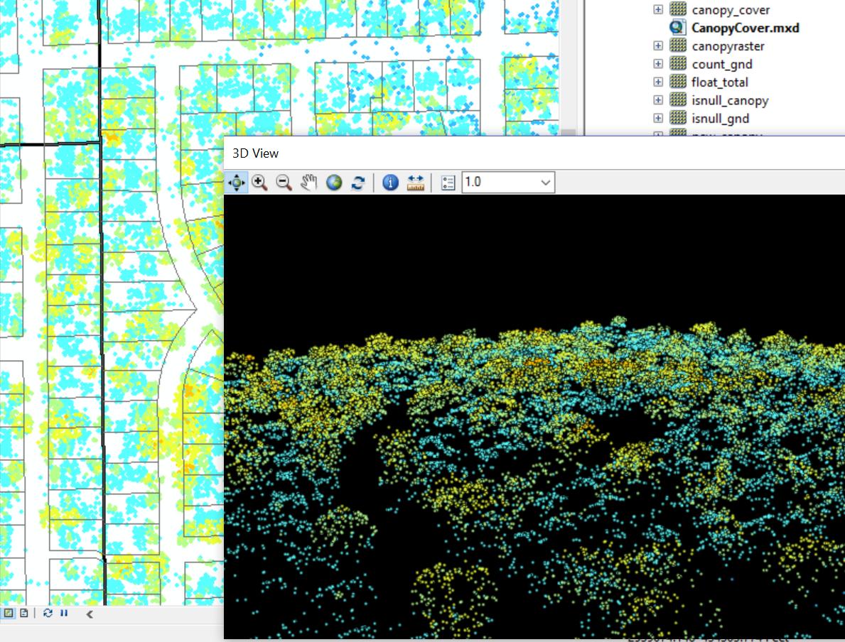 3D Tree Canopy Analysis