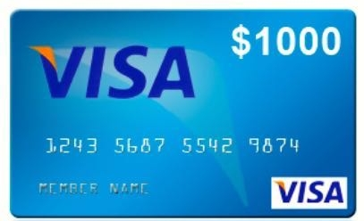 $1,000 -