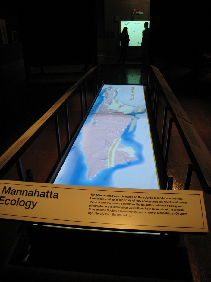 MANNAHATTA/MANHATTAN: A NATURAL HISTORY OF NEW YORK CITY