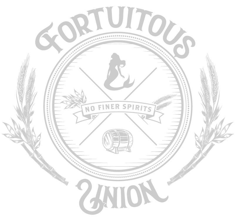 6739_Fortuitous_Union_TEE_03+white.jpg