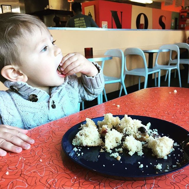 Weekends are the best!!! . . . Slow down, cut your muffins into tiny pieces, sit back and enjoy ✌🏽 . . . Thanks for #noshing with us and capturing this  adorable 📸👇🏼 • @pitmama15 . . . #noshdurm #durm #durhamnc #nc #scones #muffins #brunch #breakfast