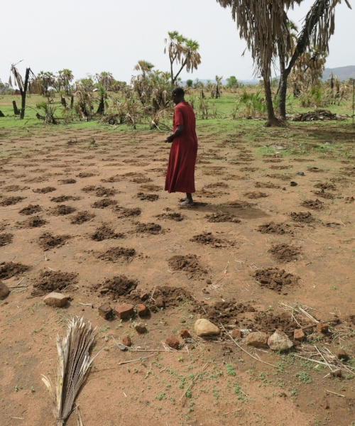 A woman plants sorghum and prays for rain.