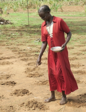Planting crops to ward off hunger