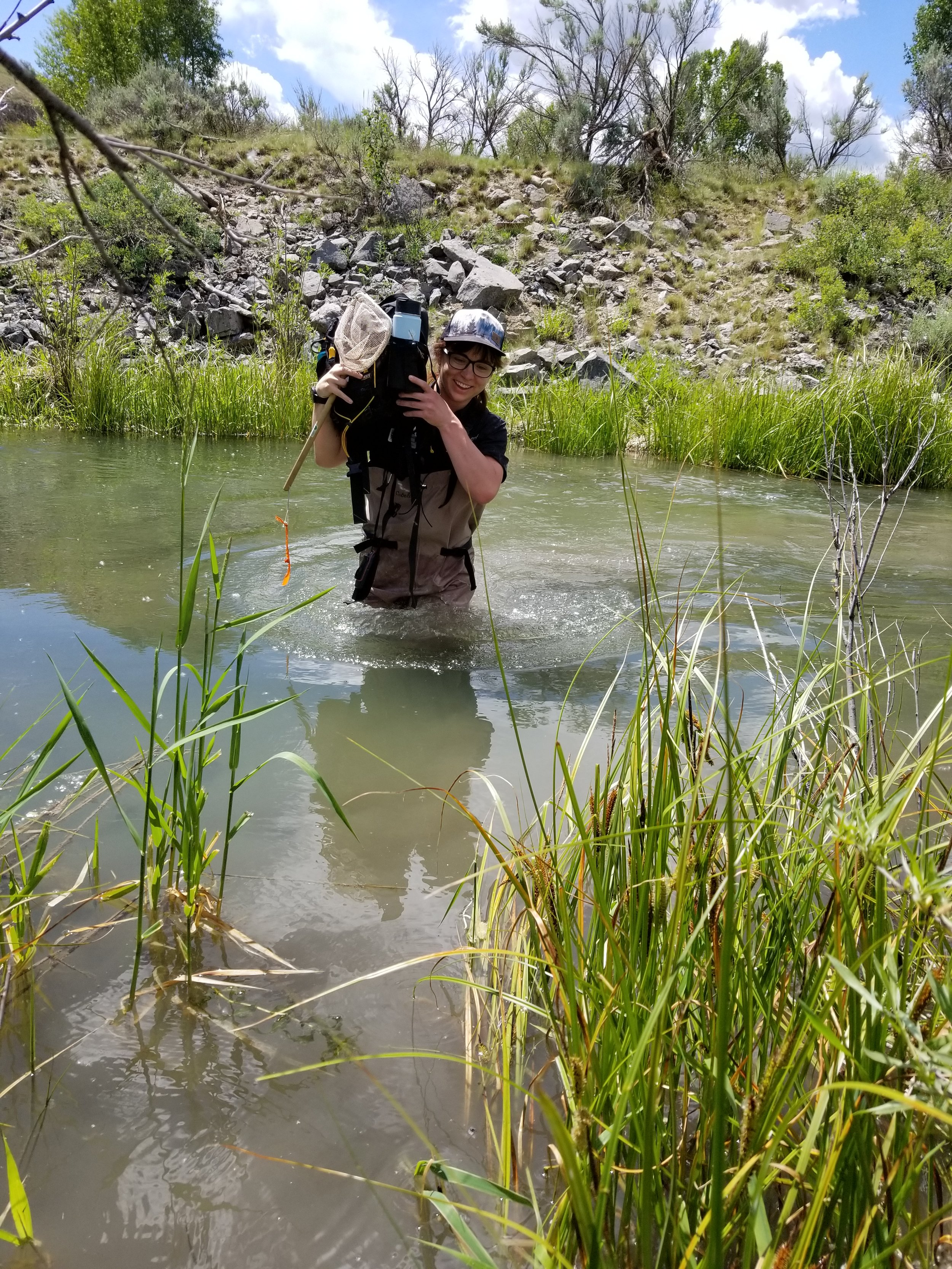 Elyce Gosselin, Teton Conservation District's Natural Resource Technician, going the extra mile for amphibian surveys.