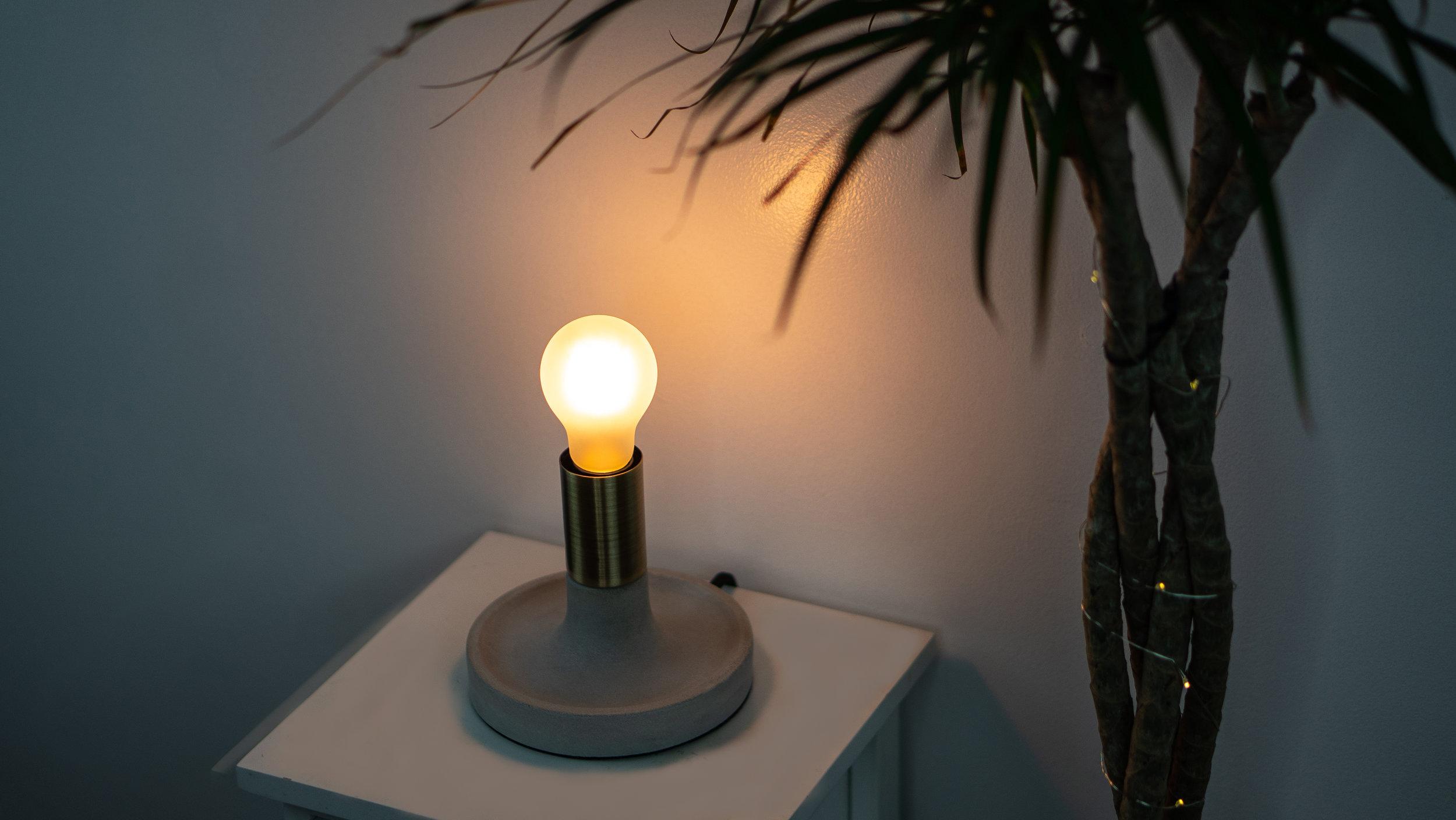 Bedtime Bulb with Tree.jpg