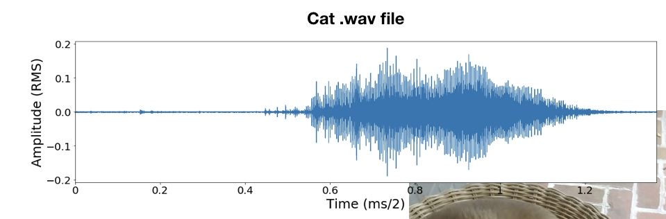 raw audio signal for george's meow