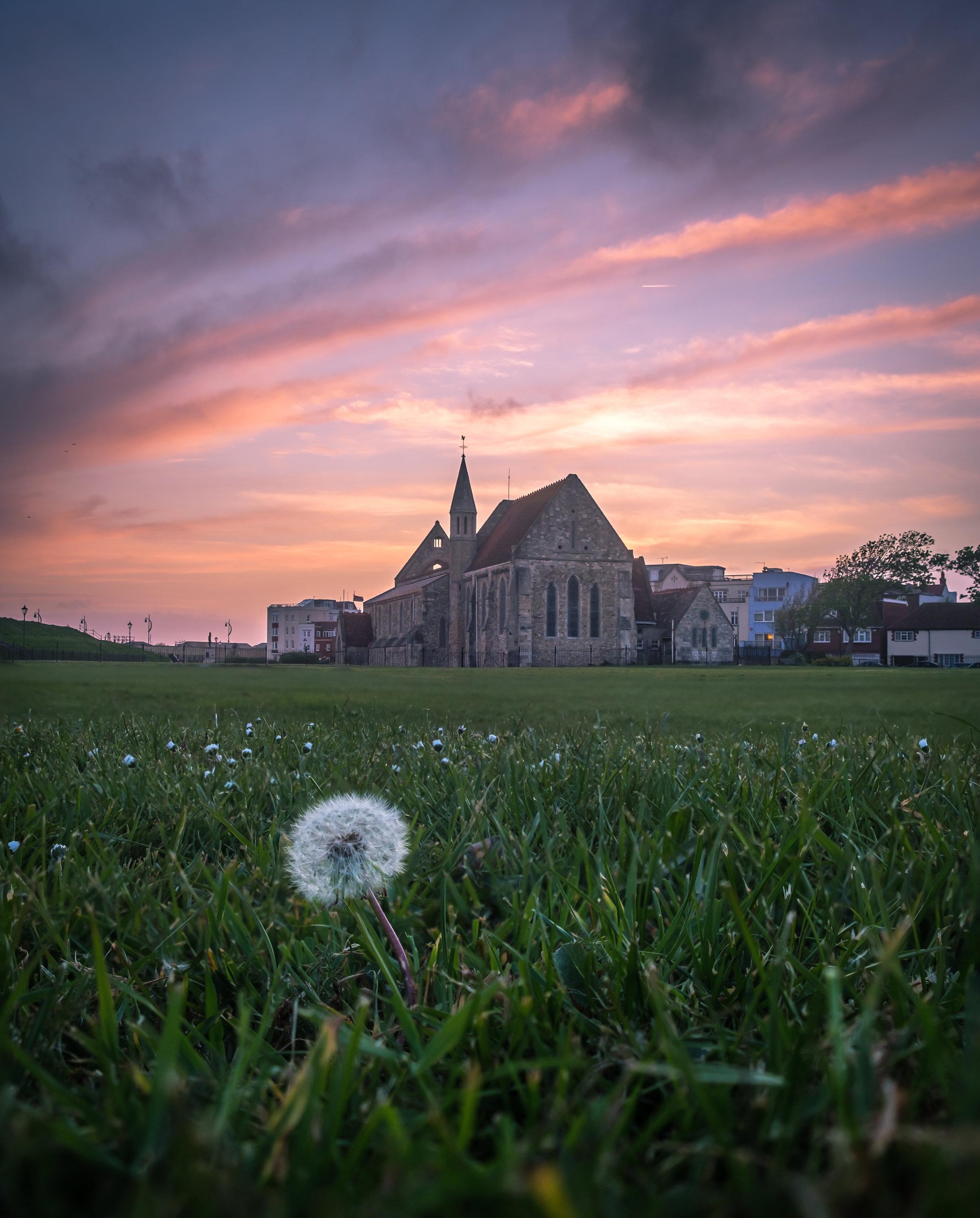Lone Dandelion at the Garrison Church - Portsmouth