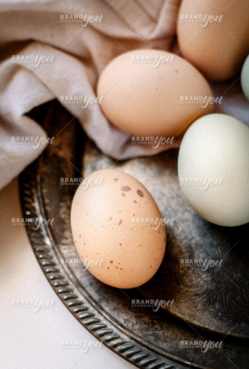 Brand Spanking You Stock Farm Eggs Pinterest-7593.jpg