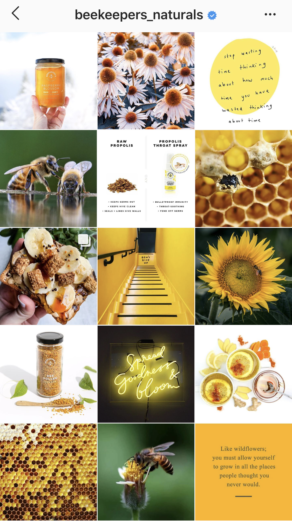 Beekeepers Naturals Instagram feed is an excellent example of visual storytelling done right! Bright, graphic images with a focused color palette help the brand images come to life.