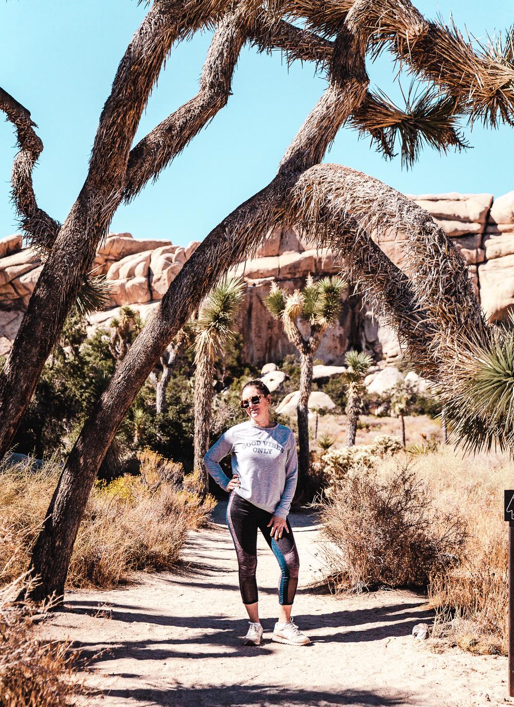 A visual travelogue of Joshua Tree, CA by Los Angeles photographer Sarah Ehlinger