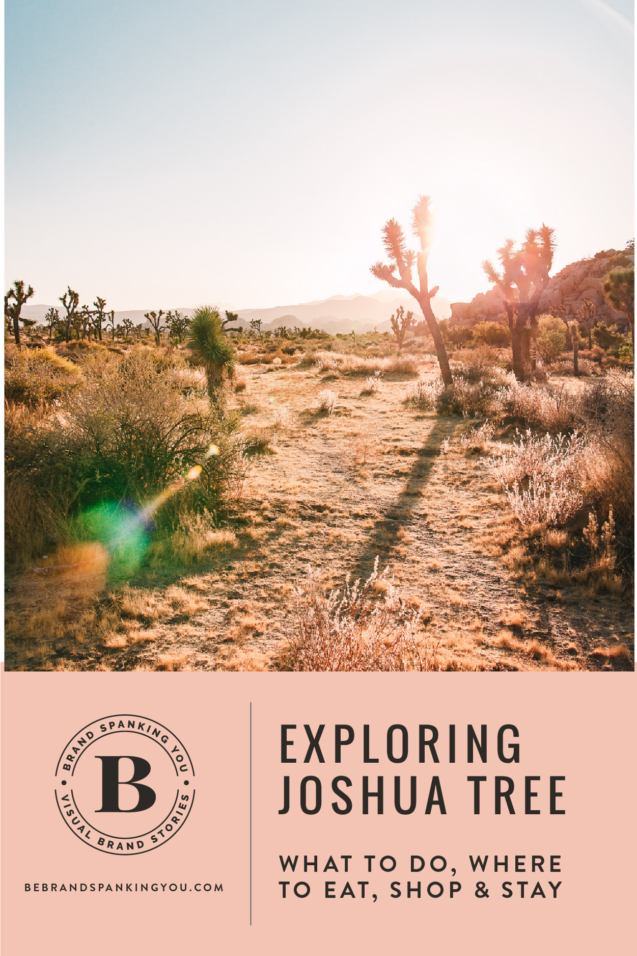 A visual travelogue of Joshua Tree, CA by photographer Sarah Ehlinger. Find out what to do, and where to stay, eat & shop.