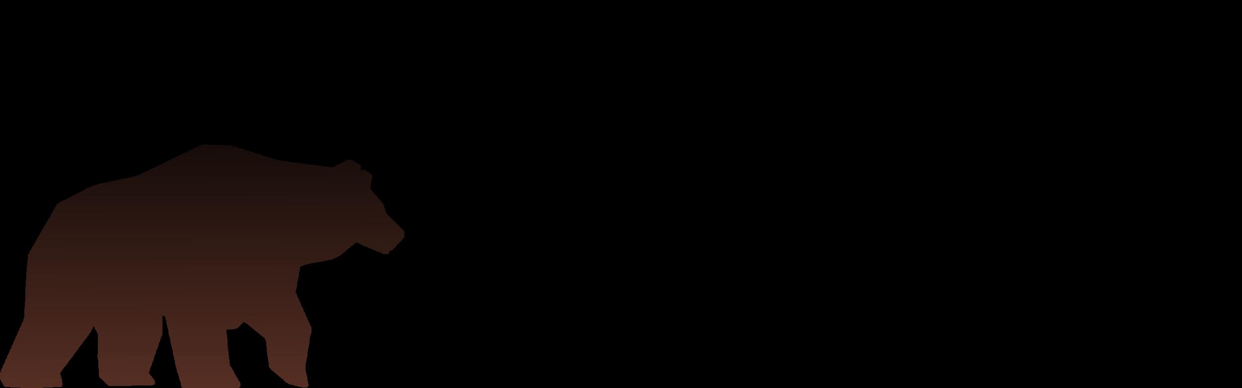 HSV header.png