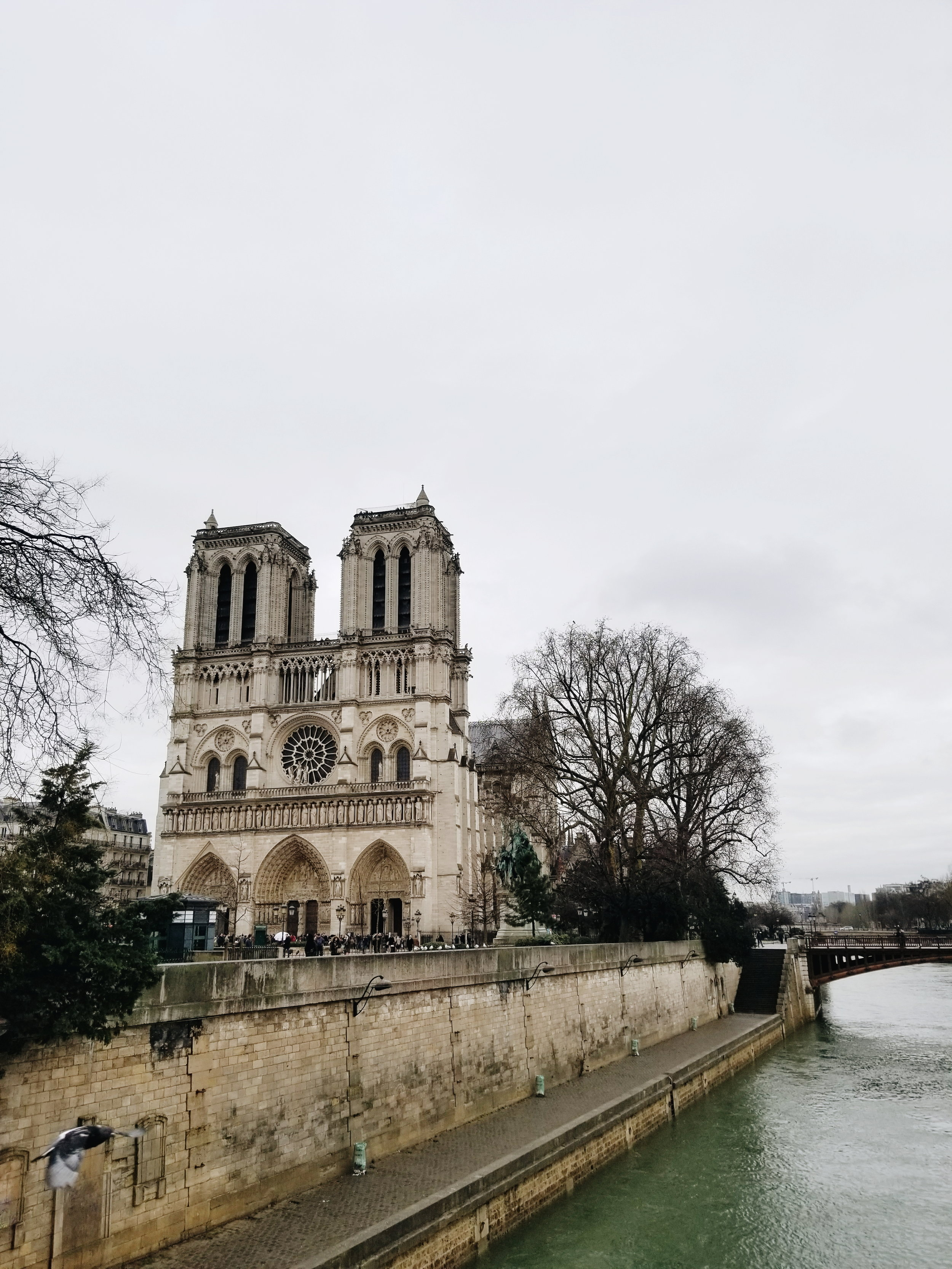 postcards-from-paris-notre-dame.jpg