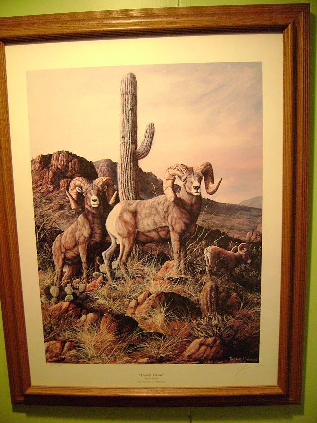 """""""Desert Dawn"""" by Trevor V. Swanson"""