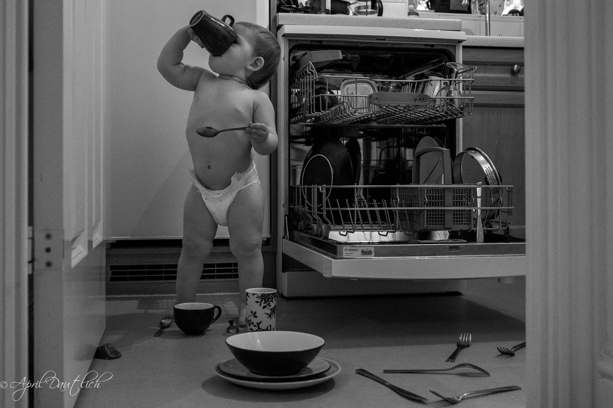 Dishwasher Chaos.jpg