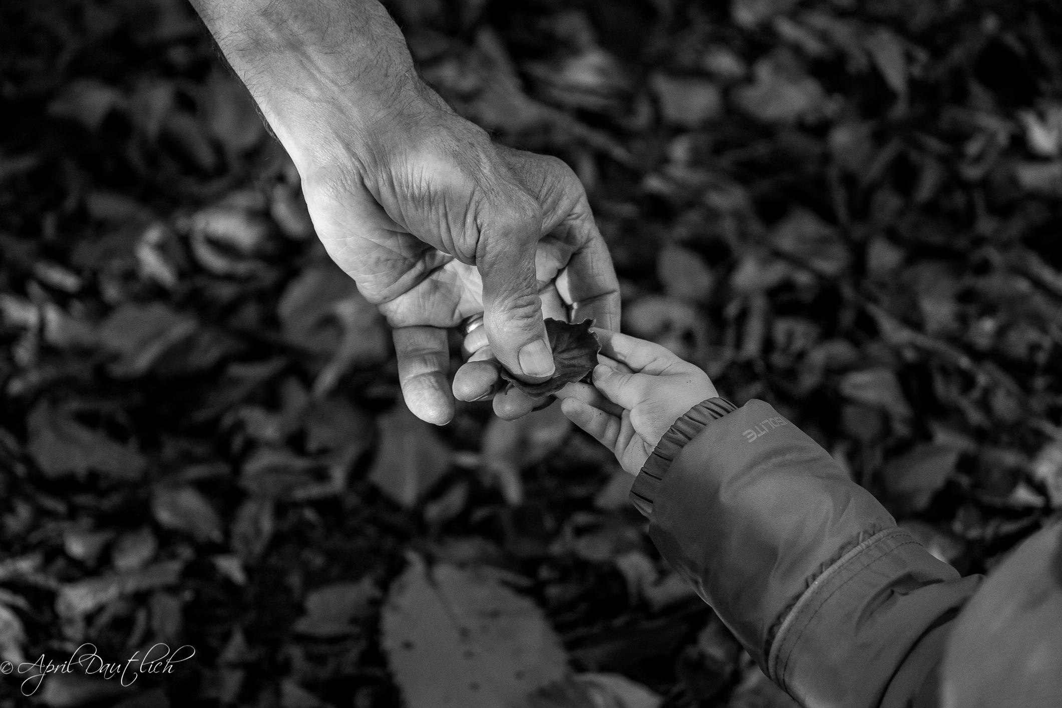 Leaf hand off
