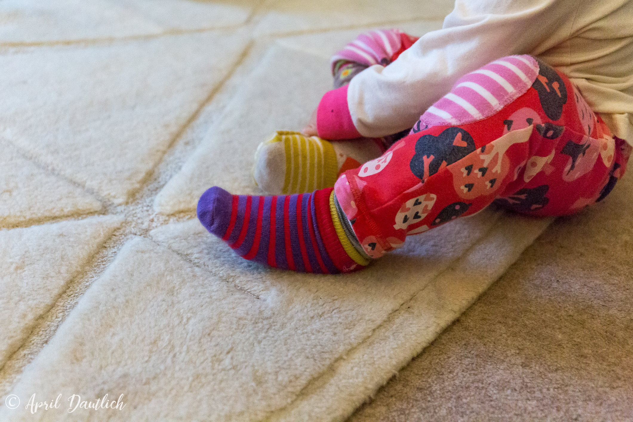 socks sitting.jpg