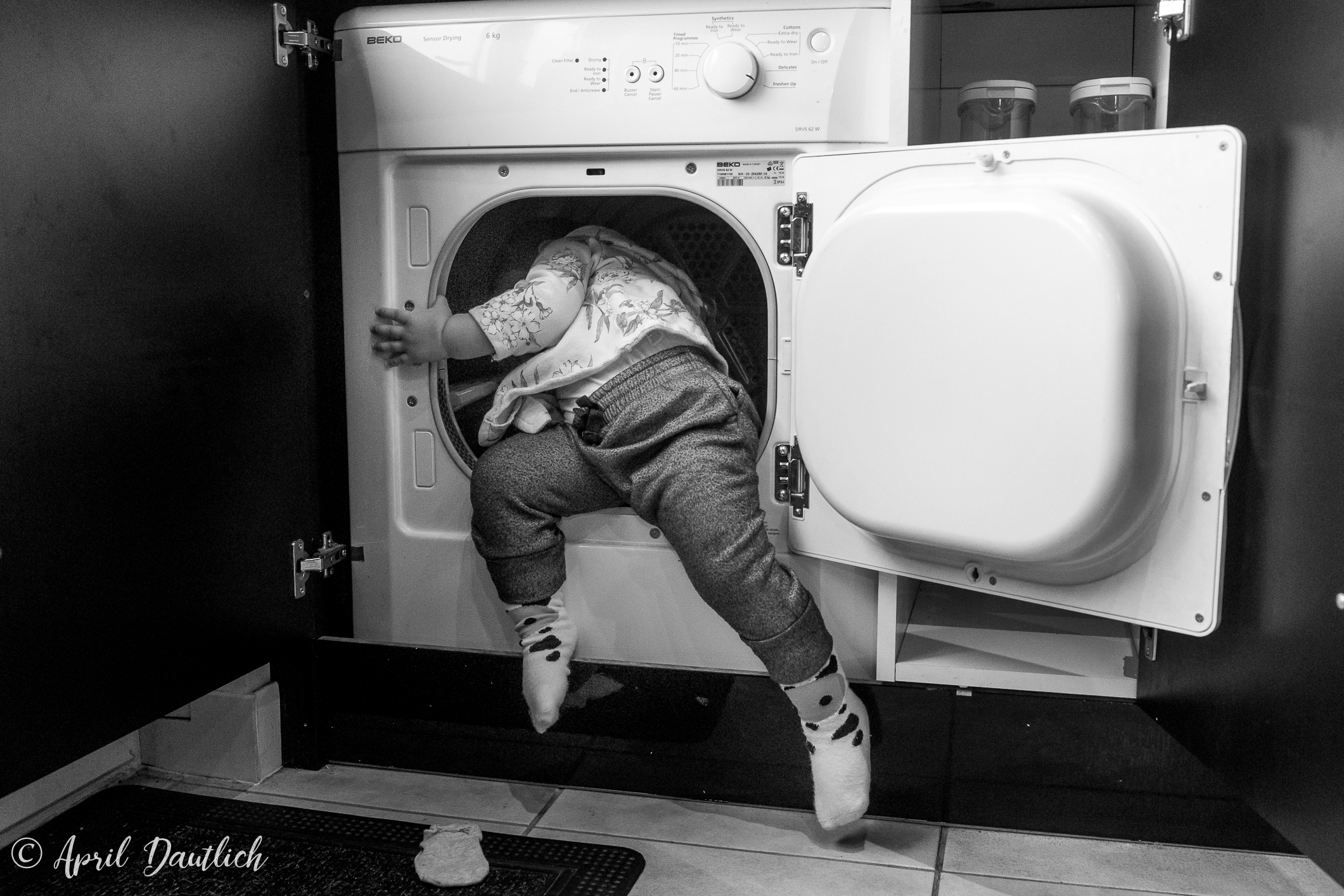 Climbing out of dryer.jpg
