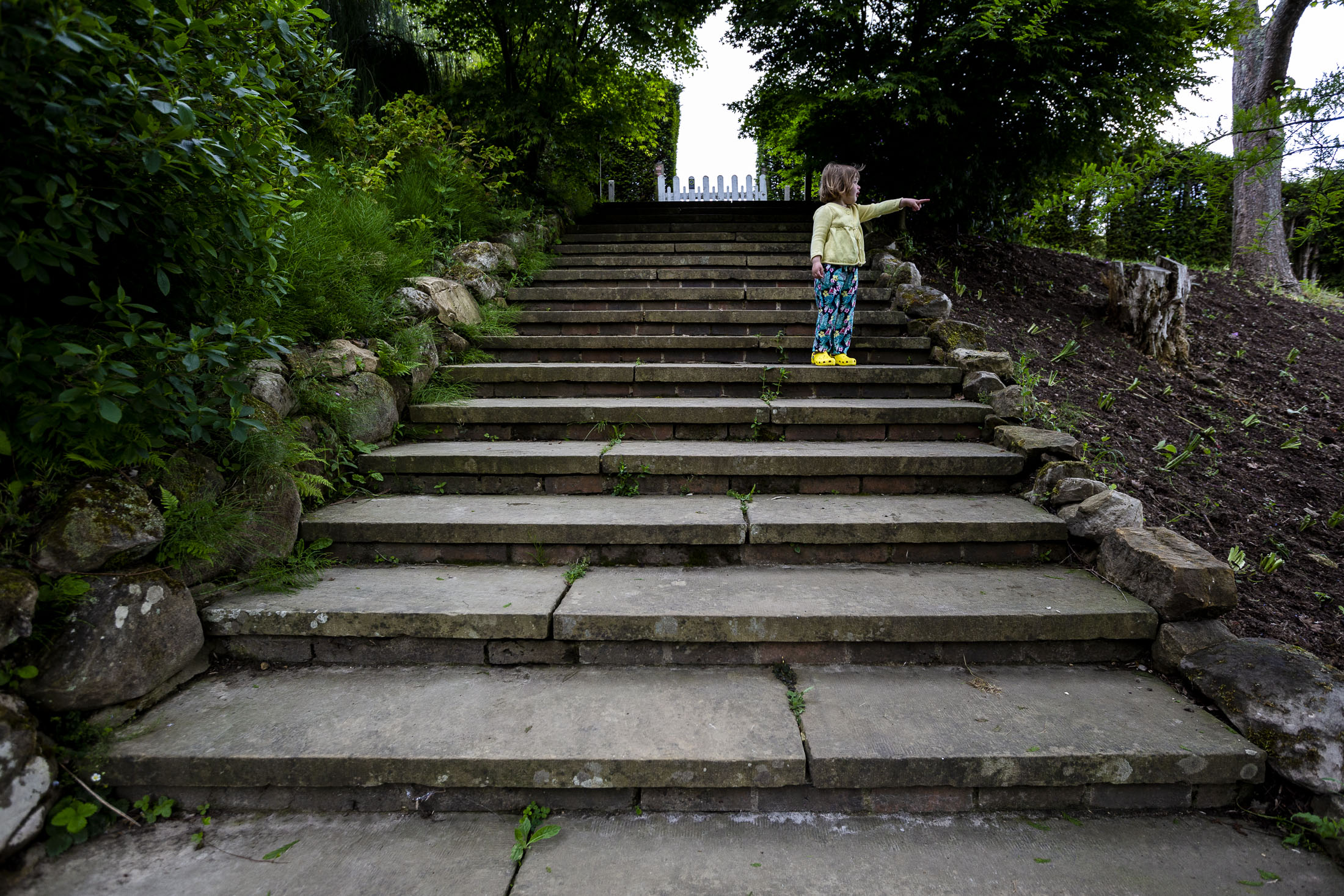 hazel pointing on stairs family photography.jpg