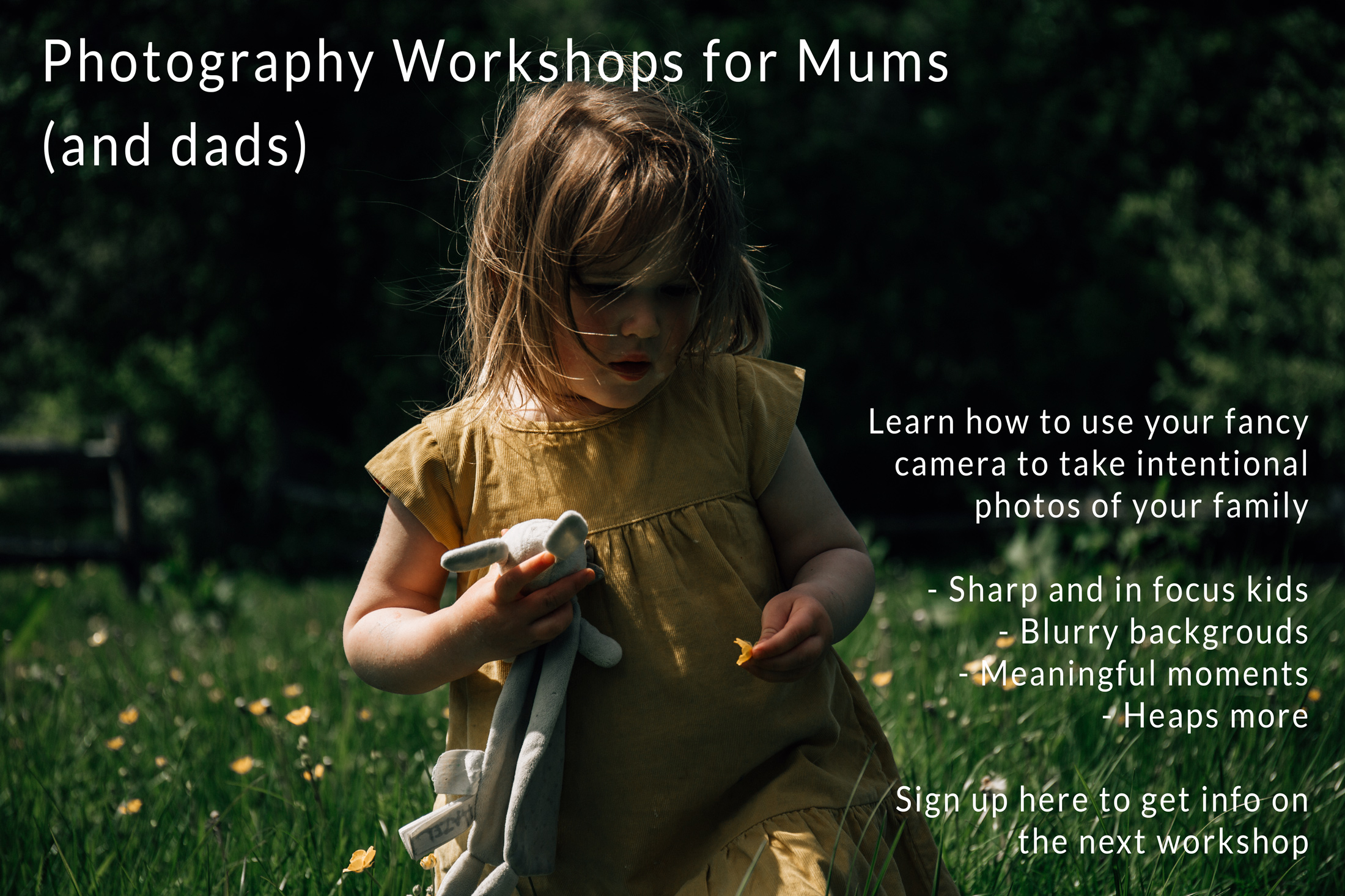 Finally make photos you're excited to print with that fancy camera you have. Sign up for details here. Autumn Workshops being scheduled now!