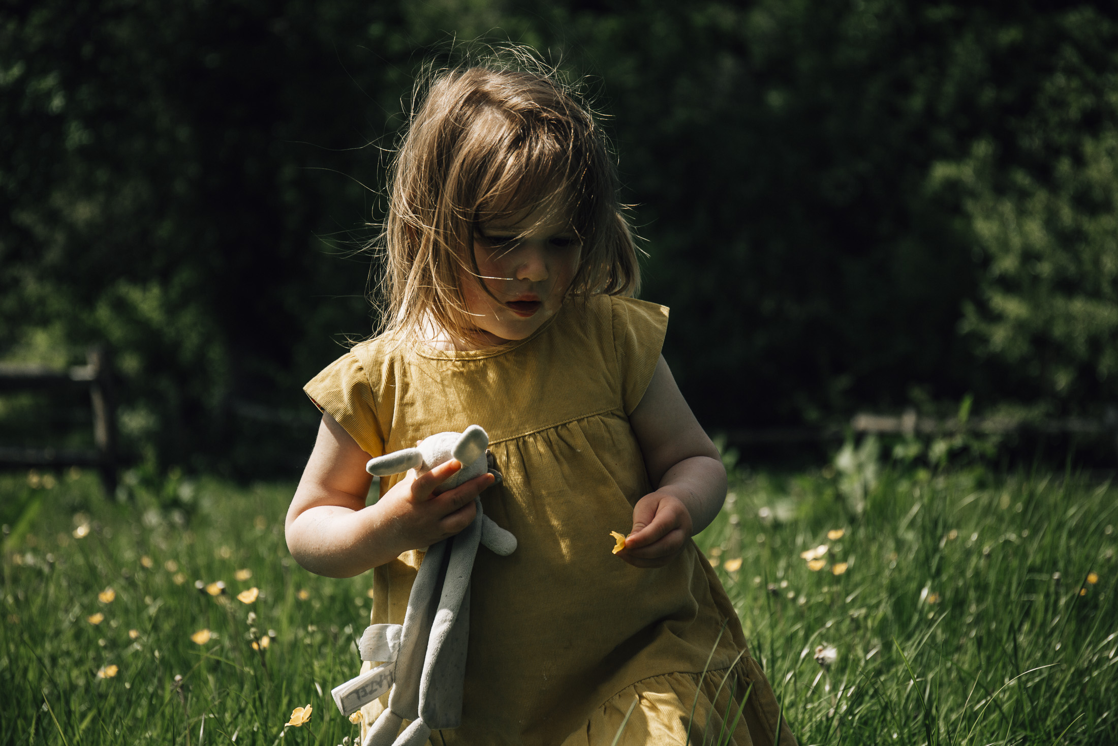 Toddler walking through field in summer