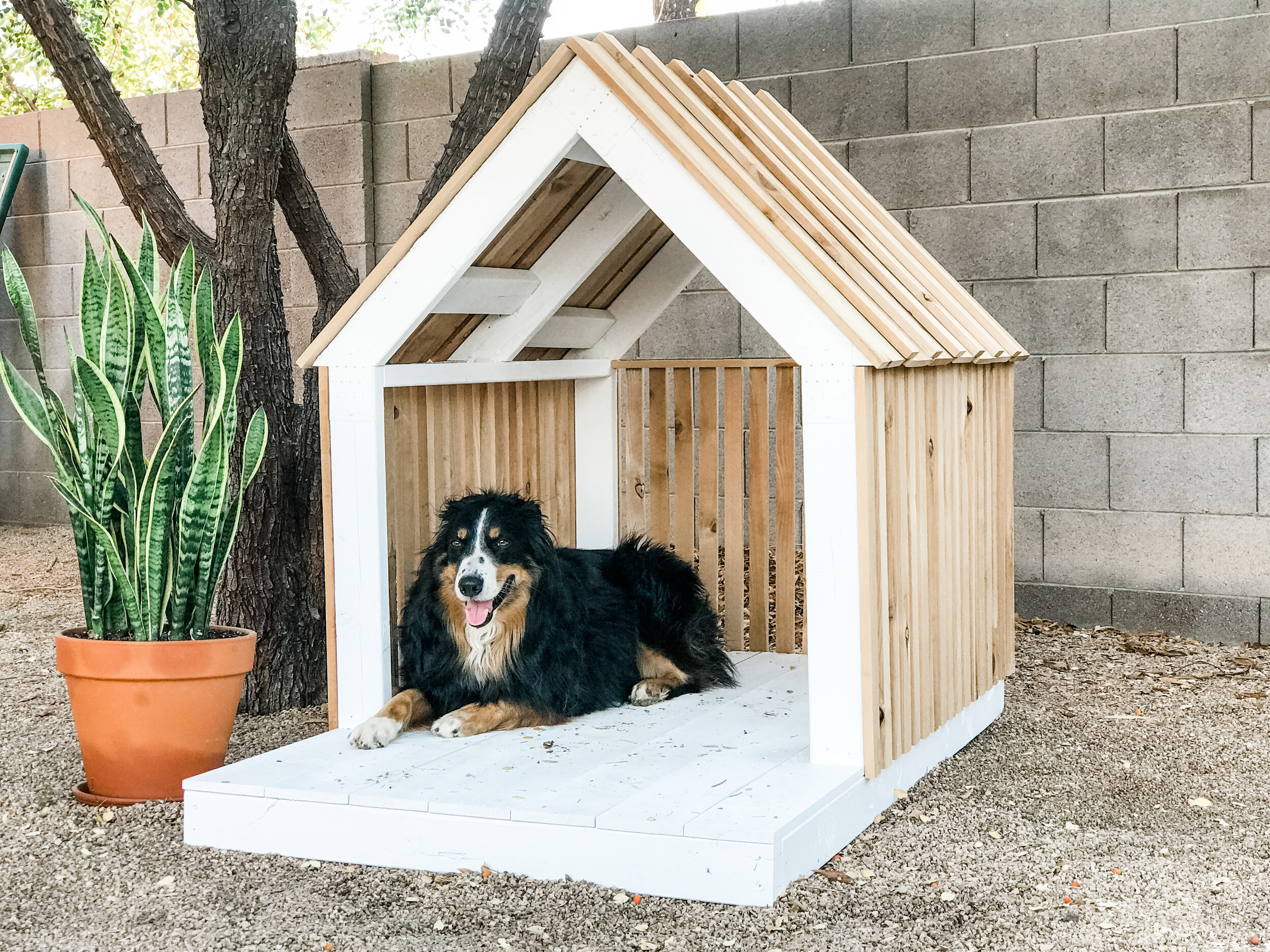 Diy Modern Dog House The Awesome Orange