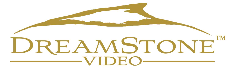 DSV-Logo-transparent-1.png