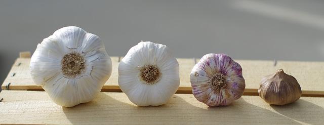 garlic-3211724_640.jpg