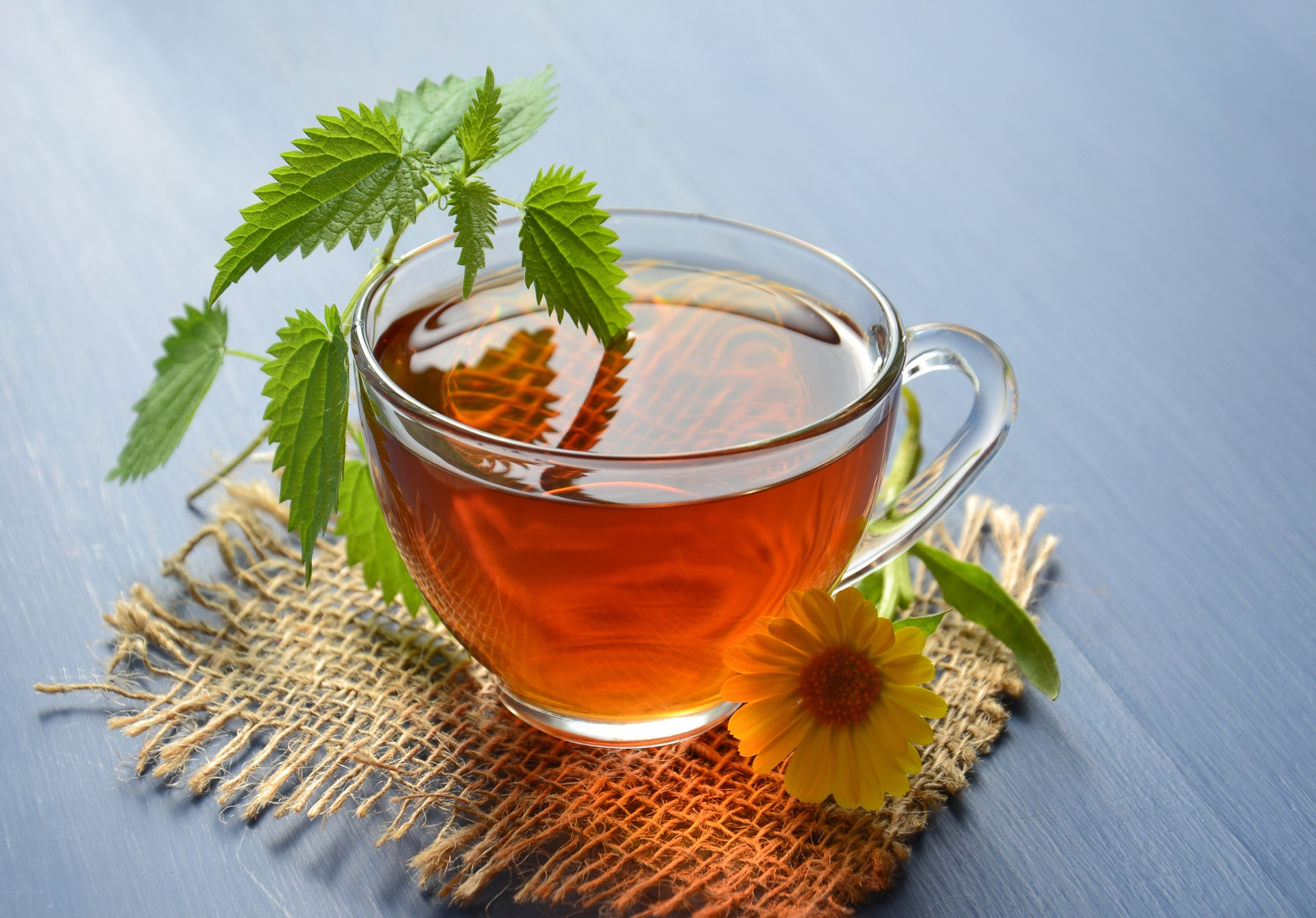 herbal-tea-15362018502YT.jpg