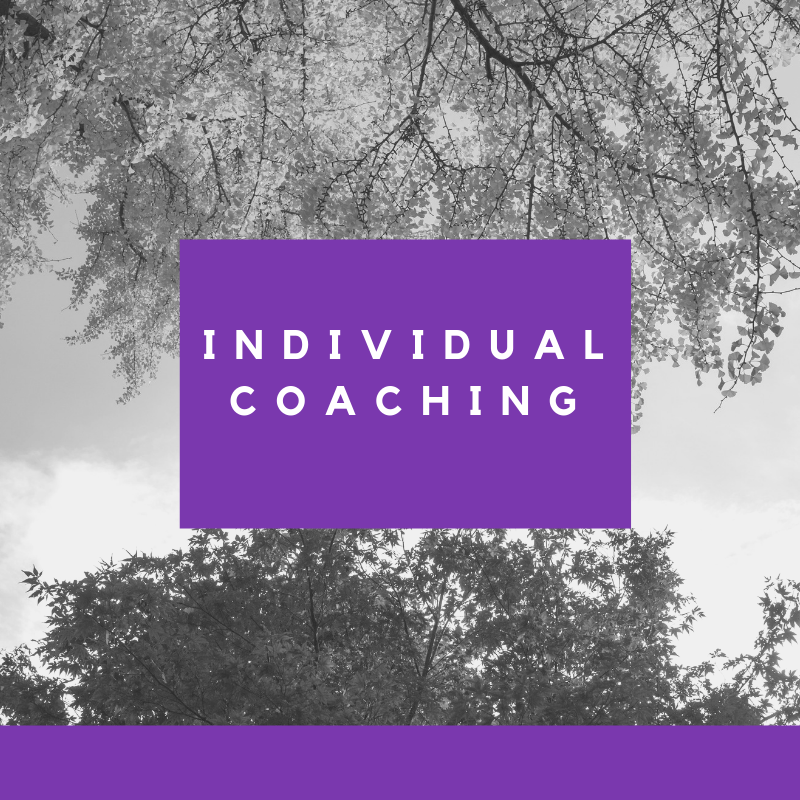 individual coaching with lolita e walker of walker & walker enterprises.png