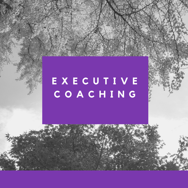 executive coaching with lolita e walker of walker & walker enterprises.png
