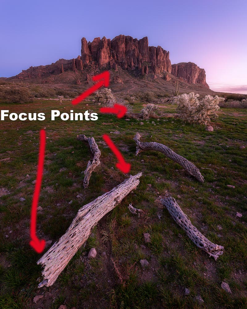 Focus Stack Supers IG copy.jpg
